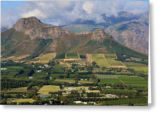 Winelands Greeting Cards - Franschhoek mountains Greeting Card by Werner Lehmann