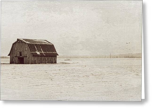 Hartsburg Greeting Cards - Frechman Barn with Textures Greeting Card by Wayne Meyer