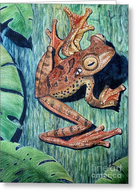 Recently Sold -  - Flying Frog Greeting Cards - Freckles Tree Frog Greeting Card by Joey Nash