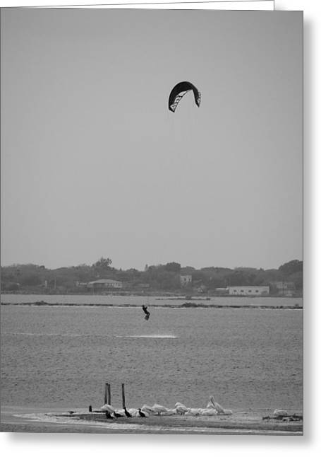 Kite Boarding Greeting Cards - Free Flight Greeting Card by Tom DiFrancesca