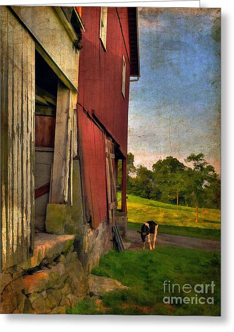 Dairy Farming Greeting Cards - Free Range Greeting Card by Lois Bryan