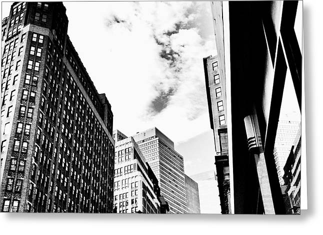 Black And White Birds Greeting Cards - Freedom - Bird and Skyscrapers - New York City Greeting Card by Vivienne Gucwa