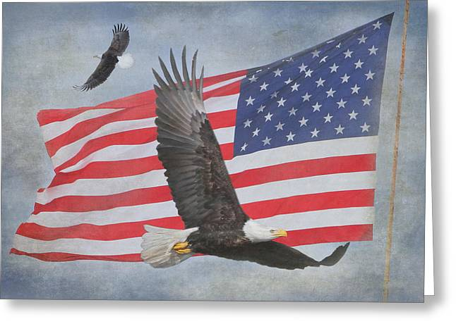 4th July Photographs Greeting Cards - Freedom Flight Greeting Card by Angie Vogel