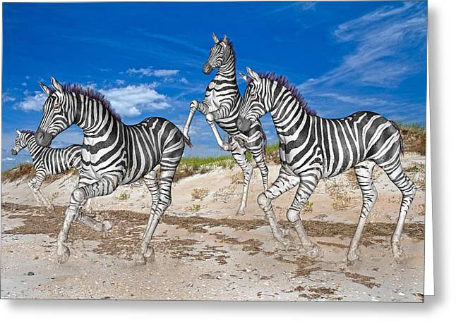 Playing Digital Art Greeting Cards - Freedom Fun Forever Greeting Card by Betsy A  Cutler