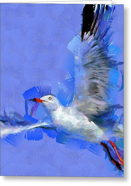 Flying Seagull Paintings Greeting Cards - Freedom Greeting Card by Georgi Dimitrov