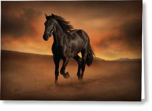 Freedom In The Desert Greeting Card by Jennifer Woodward