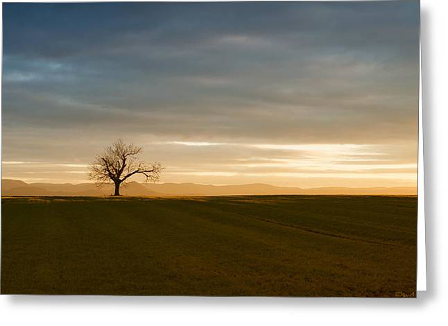 Himmel Greeting Cards - Single Joy Greeting Card by Miguel Winterpacht