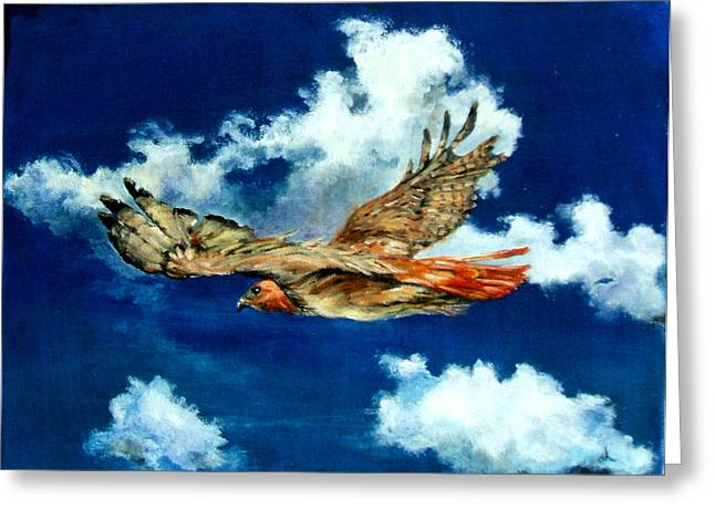 Diane Kraudelt Greeting Cards - Freedom Of The Redtailed Hawk Greeting Card by Diane Kraudelt