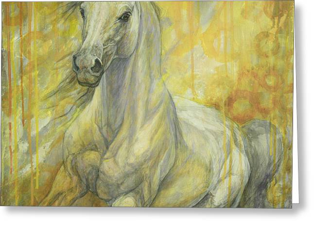 Horse Artist Greeting Cards - Freedom Greeting Card by Silvana Gabudean