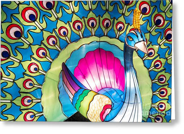 Chinese Lanterns Greeting Cards - Peacock Greeting Card by Tim Gainey