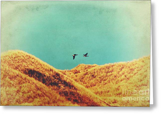 Greylag Greeting Cards - Freedom Vintage Greeting Card by Angela Doelling AD DESIGN Photo and PhotoArt