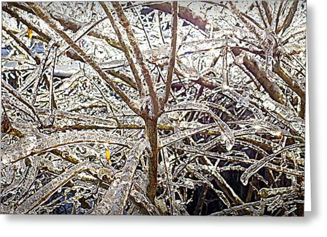 Winter Storm Greeting Cards - Freezing Ontario Greeting Card by Valentino Visentini