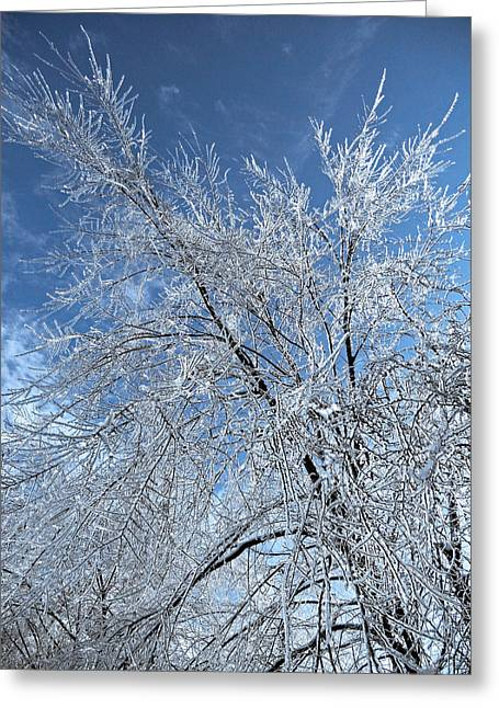 Sonne Greeting Cards - Freezing Rain ... Greeting Card by Juergen Weiss