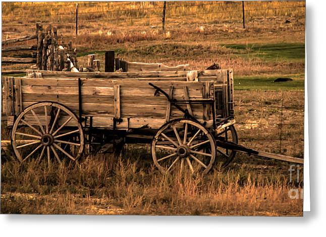 Haybales Greeting Cards - Freight Wagon Greeting Card by Robert Bales