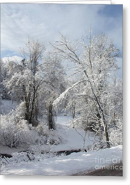 Dantzler Greeting Cards - Fremont Snowfall 1 Greeting Card by Andrew Govan Dantzler