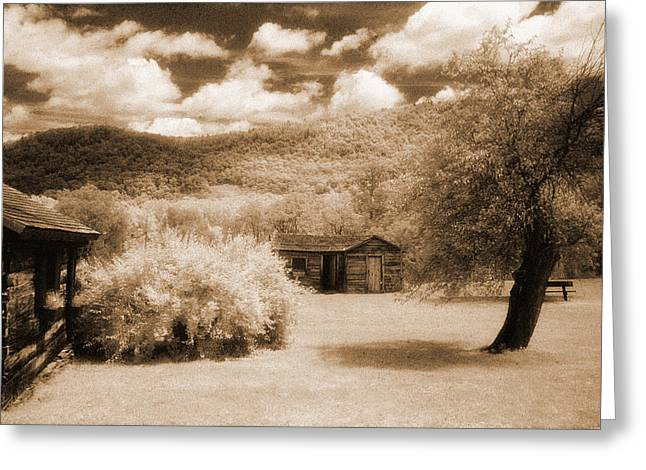 Jim Cook Greeting Cards - French Asylum Greeting Card by Jim Cook