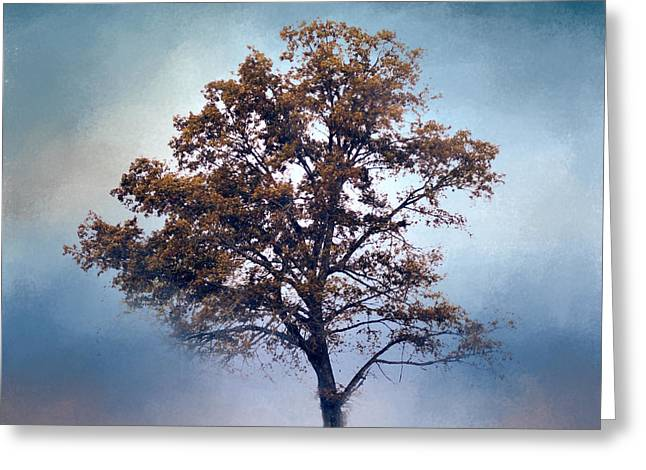 Artistic Photography Greeting Cards - French Blue Cotton Field Tree - Landscape  Greeting Card by Jai Johnson