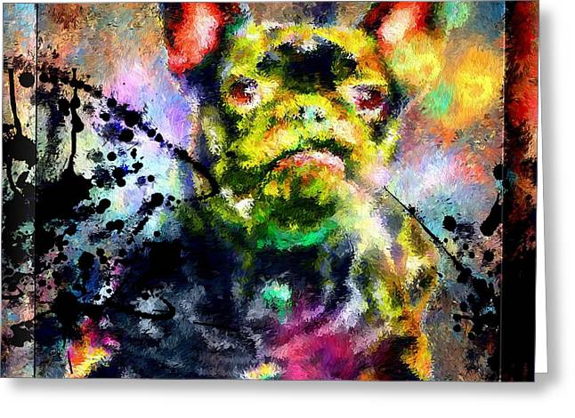 Dog Close-up Paintings Greeting Cards - French Bulldog Greeting Card by Daniel Janda