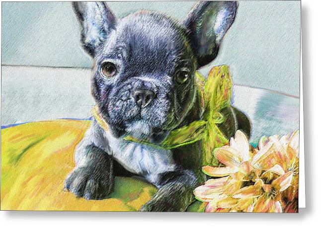 Puppies Digital Art Greeting Cards - French Bulldog Puppy Greeting Card by Jane Schnetlage
