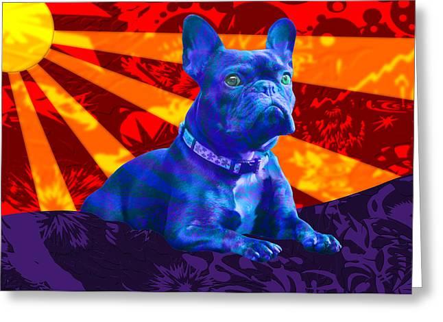 French Bulldog Greeting Card by Sean Corcoran