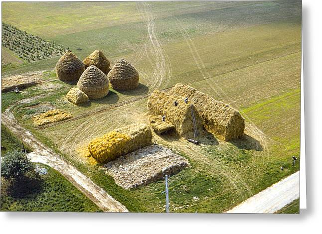 Bailing Hay Greeting Cards - French Haystacks Greeting Card by Chuck Staley