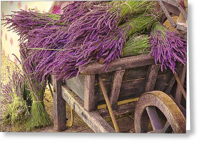 Provence Village Greeting Cards - French Lavender Cart Greeting Card by Phyllis Peterson