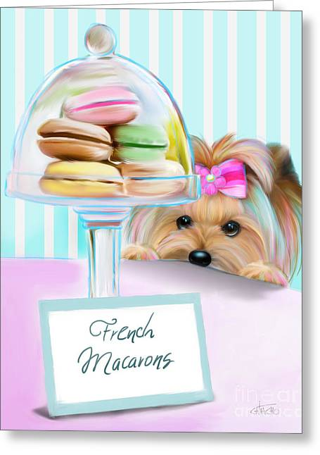 Candy Jar Greeting Cards - French Macarons Greeting Card by Catia Cho