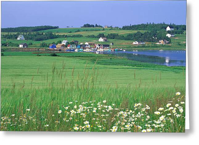 Green Pasture Greeting Cards - French River, Prince Edward Island Greeting Card by Panoramic Images