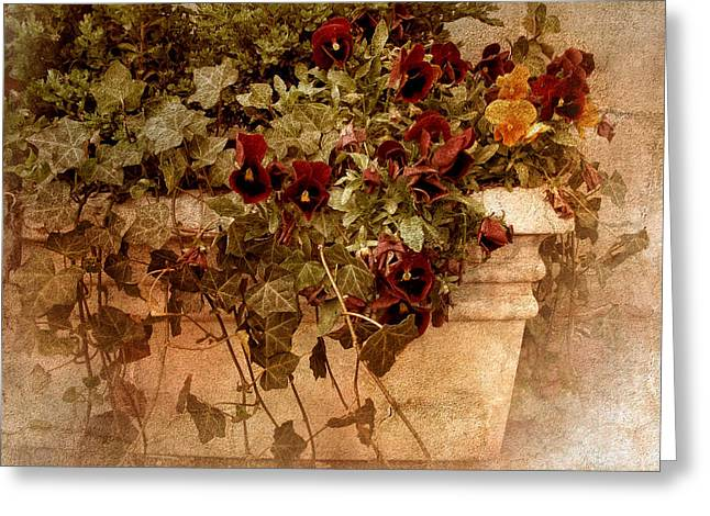 Texture Flower Greeting Cards - Fresco Greeting Card by Jessica Jenney
