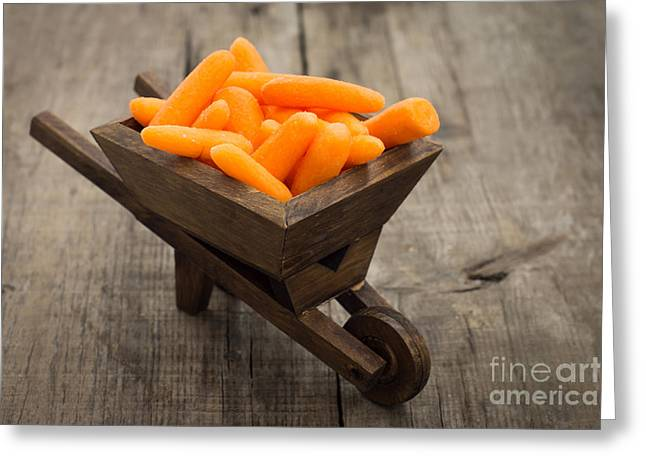 Carrot Greeting Cards - Fresh Carrots in a miniature wheelbarrow  Greeting Card by Aged Pixel