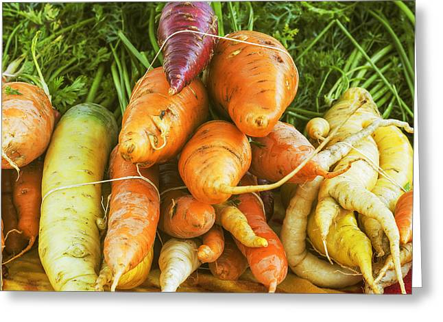 Organically Greeting Cards - Fresh Carrots Greeting Card by Vishwanath Bhat