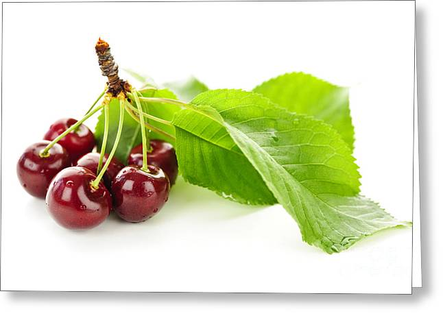 Healthy Greeting Cards - Fresh cherries with leaves Greeting Card by Elena Elisseeva