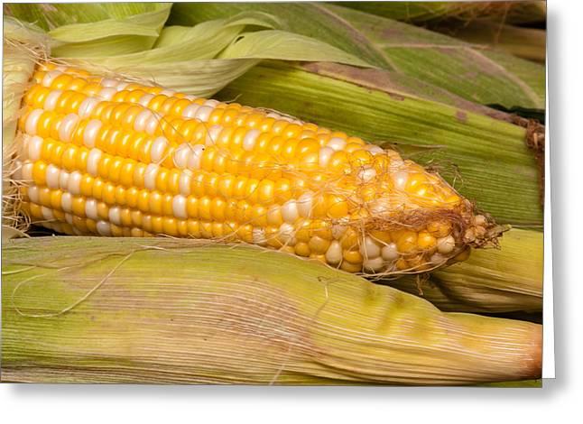 Fresh Corn at Farmers Market Greeting Card by Teri Virbickis