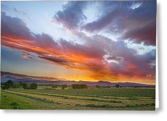 Rocky Mountain Foothills Greeting Cards - Fresh Cut Hay and Colorful Sky Greeting Card by James BO  Insogna