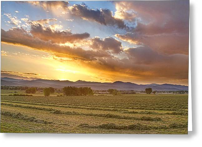 Rocky Mountain Foothills Greeting Cards - Fresh Cut Hay Greeting Card by James BO  Insogna