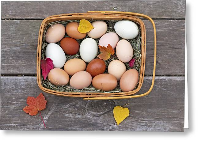 Farm Fresh Greeting Cards - Fresh Eggs In A Basket On An Old Porch Greeting Card by Glenda Christina