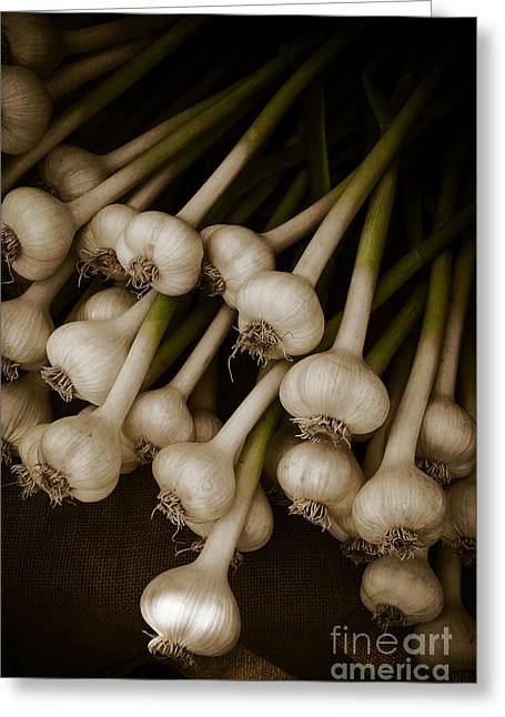 Mute Greeting Cards - Fresh Garlic Greeting Card by Edward Fielding