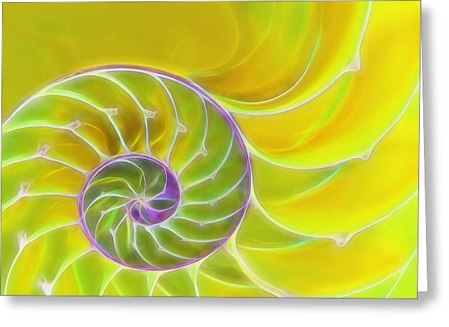 Geometric Artwork Greeting Cards - Fresh Spiral Greeting Card by Gill Billington