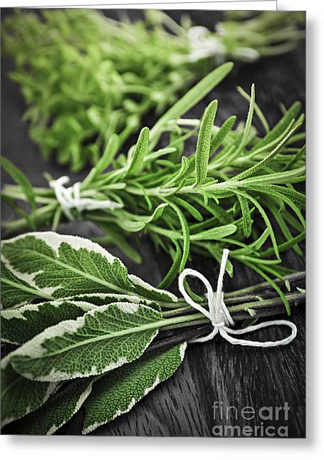 Various Greeting Cards - Fresh herbs in bunches Greeting Card by Elena Elisseeva