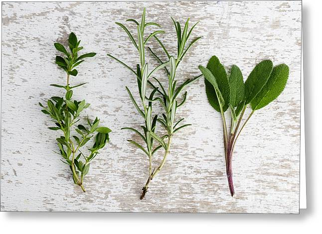 Prepared Greeting Cards - Fresh Herbs Greeting Card by Nailia Schwarz