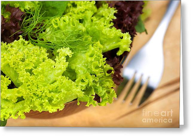 Lettuce Greeting Cards - Fresh lettuce salad Greeting Card by Anna Omelchenko