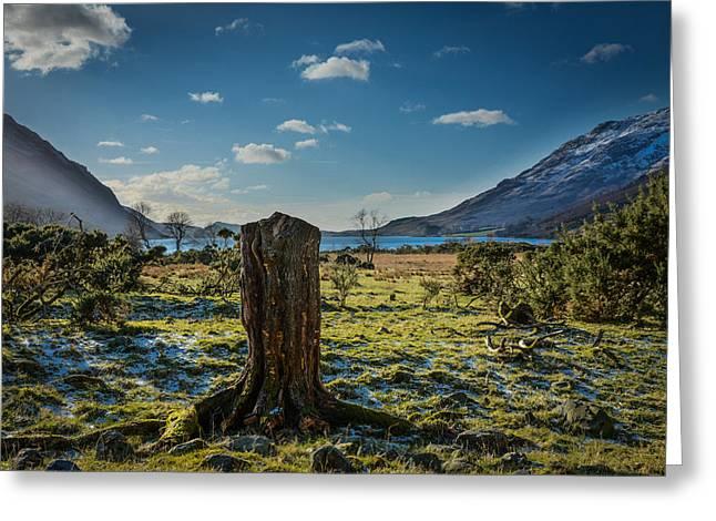 Britain Greeting Cards - Fresh Morning At The Lake. Greeting Card by Daniel Kay