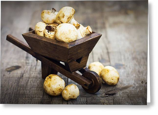 Fungi Photographs Greeting Cards - Fresh Muschrooms in a miniature wheelbarrow Greeting Card by Aged Pixel