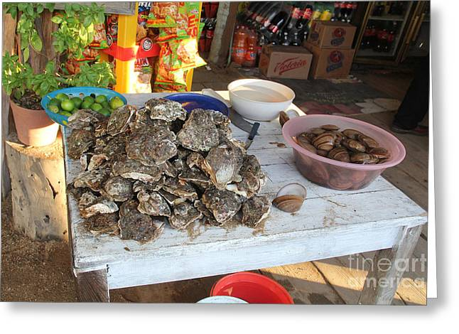 Fresh Oysters Barre De Navidad Greeting Card by Linda Queally