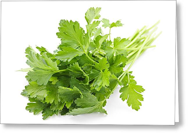 Flavor. Greeting Cards - Fresh parsley Greeting Card by Elena Elisseeva