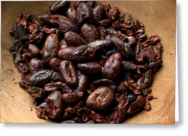 Owner Greeting Cards - Fresh Roasted Cocoa Beans - Nibs Greeting Card by Iris Richardson