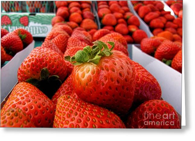Baskets Of Strawberries Greeting Cards - Fresh Strawberries Greeting Card by Peggy J Hughes