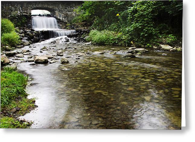 Nature Scene Greeting Cards - Fresh Water Creek Landscape Greeting Card by Christina Rollo