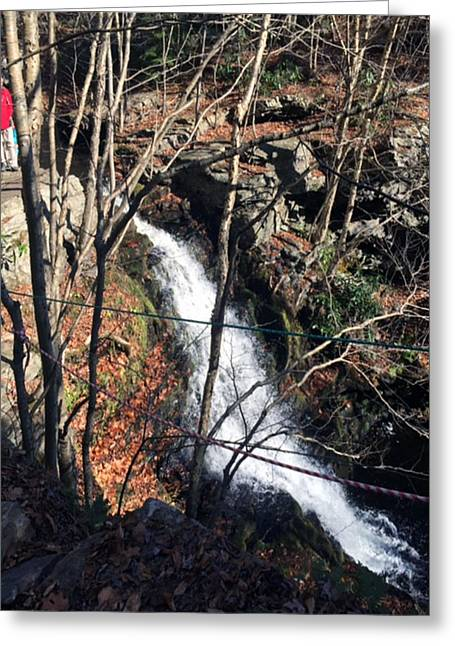 Snowwhite Greeting Cards - Fresh Water Streams around Poconos PA America USA  Greeting Card by Navin Joshi
