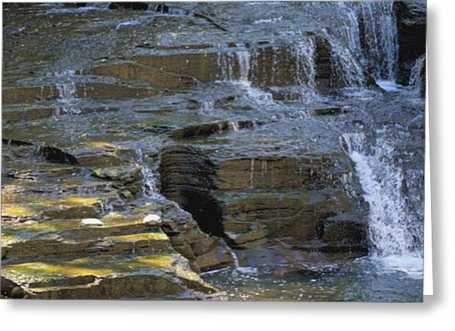 Keuka Greeting Cards - Fresh Water Greeting Card by William Norton